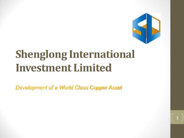 shenglong-image